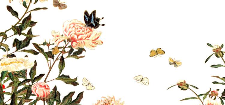 春一番の今日は草木萌動(そうもくもえうごく)